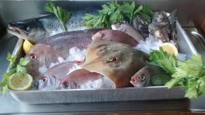 Vetrina Pesce